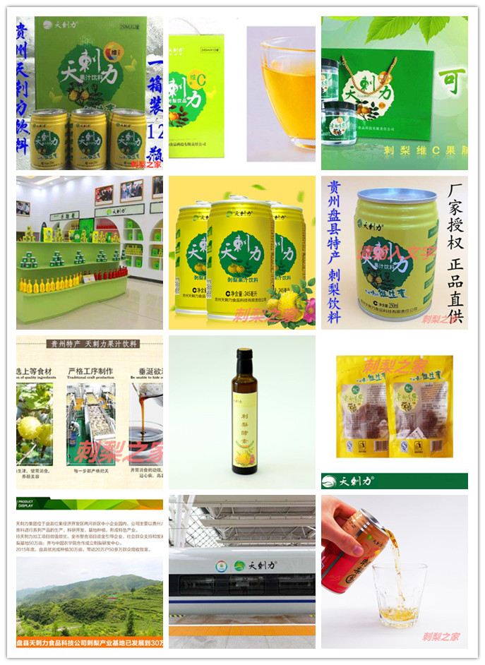 贵州天刺梨集团